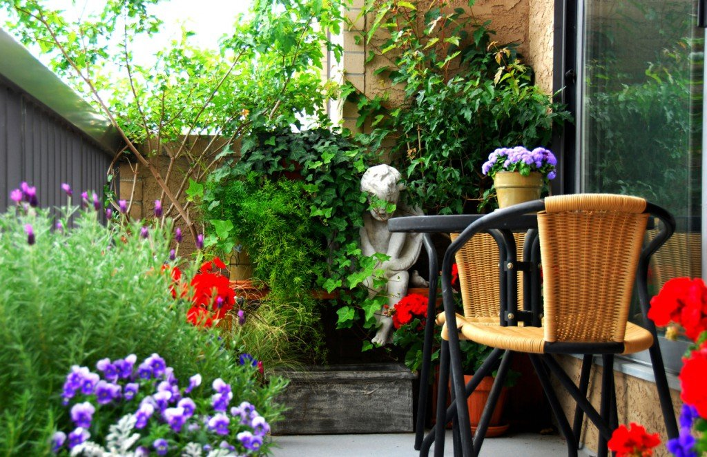 Balcony Gardening Tips and Tricks